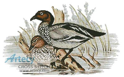 Wood Duck Cross Stitch Patterns
