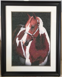 d7c6835900b Beauty in the Shadows 2 (Farm Animals Category) Completed by E Yule Click  on image for larger picture. Purchase this pattern at our Artecy Shop