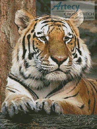 Bengal Tiger 4 ищу схему