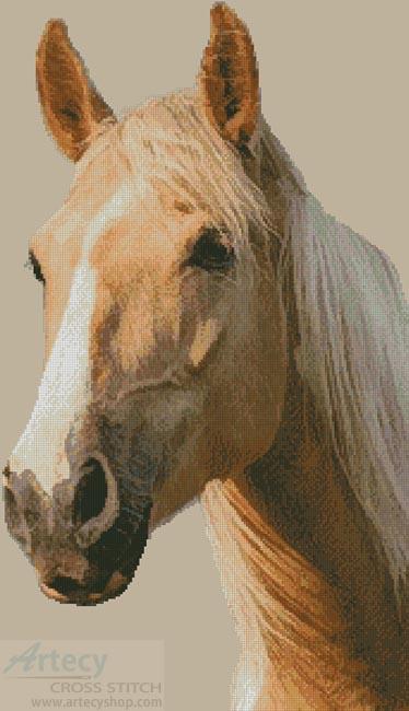 Artecy Cross Stitch Palomino Horse Cross Stitch Pattern